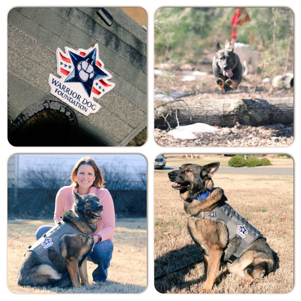 Hike for K9 Heroes