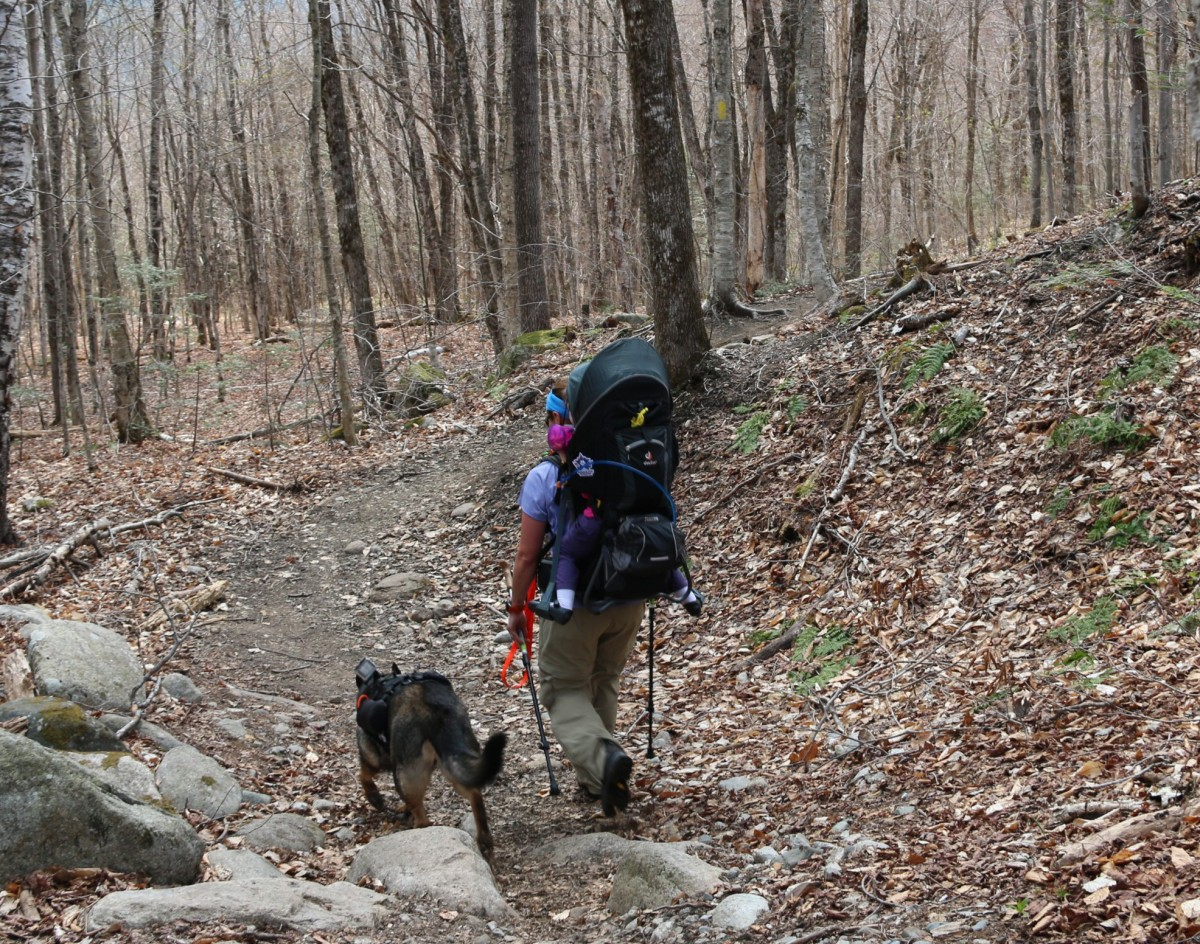 Mt. Willard – Spring Hike