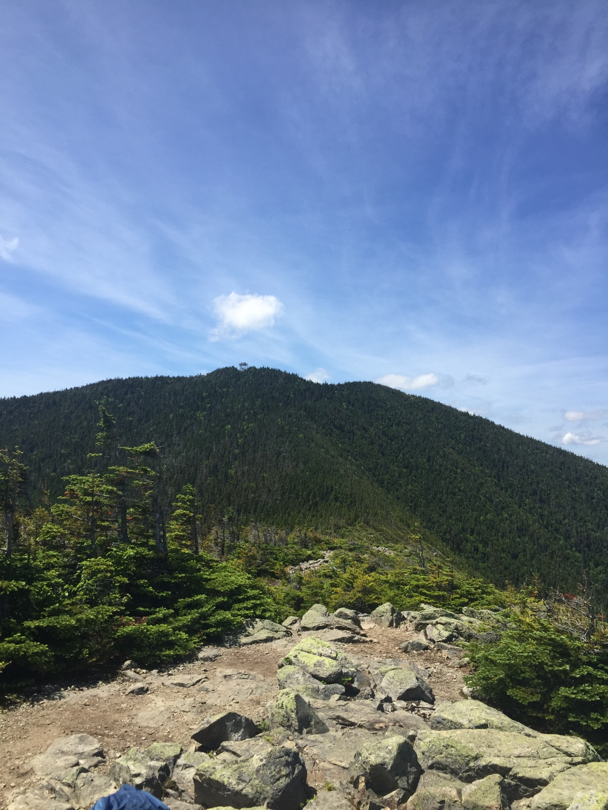 Mount Carrigain, Signal Ridge Trail