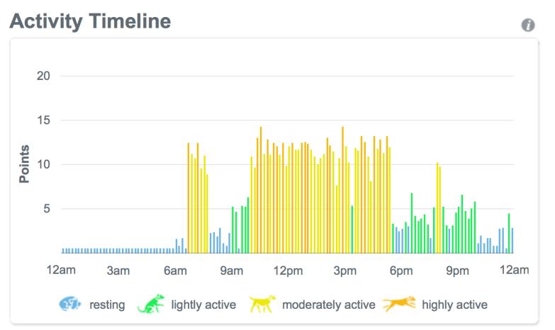 activitytimeline
