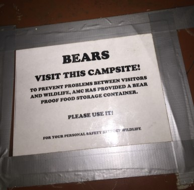Campsite Bear Box