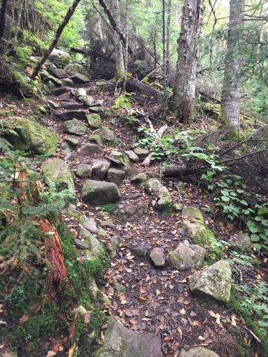 A-Z Trail