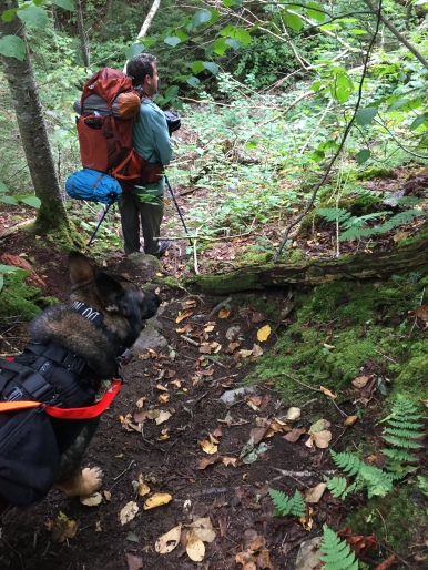 A-Z Trail Abby & Navigator